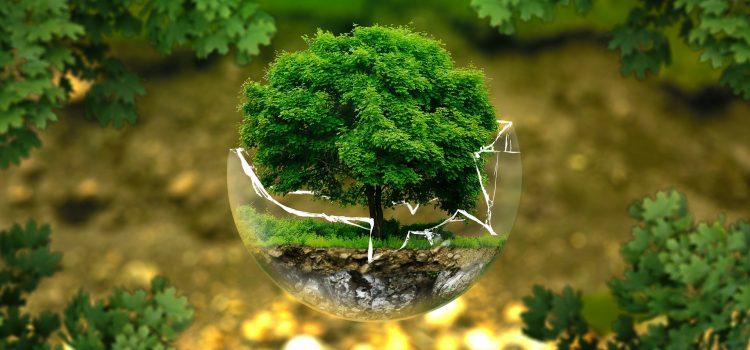 Saiba o que é um Plano de Gerenciamento de Resíduos e as suas etapas